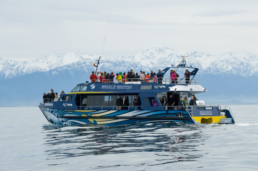 Vessel used for whale watch tours at Whale Watch Kaikoura.